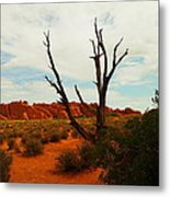 A Dead Tree Foreground A Maze Of Rocks Metal Print