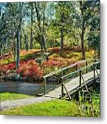 A Delightful Day Metal Print