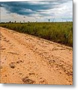A Dirt Road In The Plains Metal Print