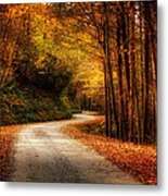 A Drive In The Mountains Of Western North Carolina Metal Print