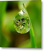 A Drop Of Water For Every Blade Of Grass Metal Print