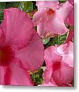 A Family Of Tropical Flowers Metal Print