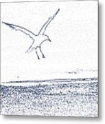 A Fine Flight Metal Print