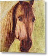 A Fine Horse Metal Print