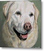 A Fine Old Lady Yellow Labrador Portrait Metal Print