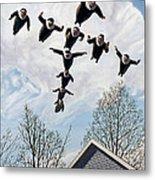 A Flock Of Flying Nuns Metal Print