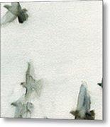 A Flock of Pigeons 1 Watercolor Painting of Birds Metal Print