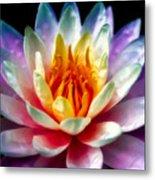 A Flower Metal Print