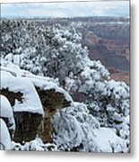 A Foot At The Canyon Metal Print