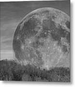A Friend At Night Metal Print