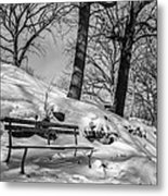 A Frigid Moment Metal Print