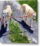 A Gentle Lead Metal Print by Molly Poole