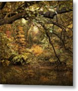 A Glimpse Of Autumn Metal Print
