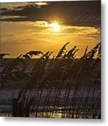 A Golden Sunrise Metal Print