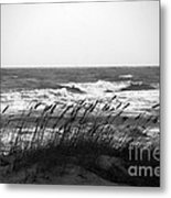 A Gray November Day At The Beach Metal Print by Susanne Van Hulst