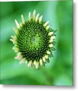 A Green World Metal Print