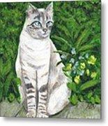 A Grey Cat At A Garden Metal Print