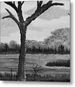 A Grey Day Metal Print