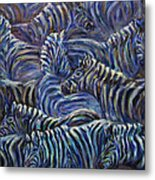 A Group Of Zebras Metal Print