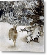A Hare In The Snow Metal Print