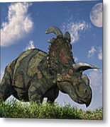 A Herd Of Albertaceratops Grazing Metal Print