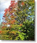 A Hint Of Fall Phase 2 Metal Print