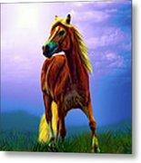 A Horse Called Sheba Metal Print