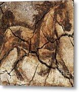 A Horse - Cave Art Metal Print