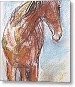 A Horse Looks Back Metal Print