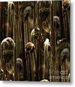 A Jungle Of Ferns Metal Print