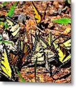 A Kaleidoscope Of Butterflies Metal Print