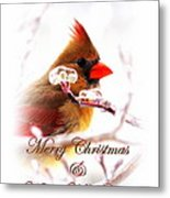 A Lady For Christmas - Cardinal Card Metal Print