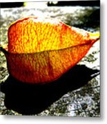 A Lantern Lit By Sunlight Metal Print