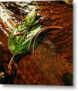A Leaf Washed Over Metal Print by Jeff Swan
