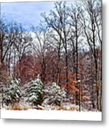 A Light Dusting Metal Print