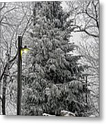 A Light Snow Metal Print