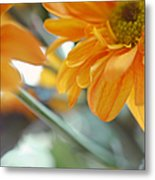 A Little Bit Sun In The Cold Time I Metal Print