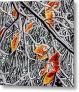 A Little Cheer On A Snowy Day Metal Print