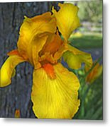 A Lively Soul Blooms Metal Print