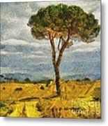 A Lonely Pine Metal Print
