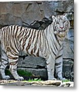 A Magnificent Creature Metal Print