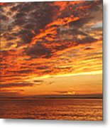 A Moment Of Color Metal Print