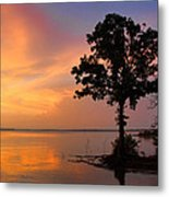 A Most Colorful Scene Metal Print