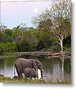 A Mother And Child Metal Print