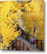 A Mother And Daughter Walking Metal Print