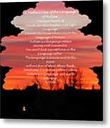 A Mother's View Of Autism Metal Print