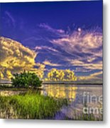 A New Experience Metal Print