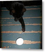 A New Kind Of Ball? Metal Print