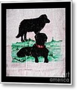 A Newfoundland Dog And A Labrador Retriever Metal Print