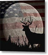 A Night Vision Metal Print